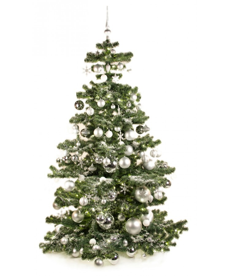 Basic Tree Bright and Silver 210cm | Kerstbomen