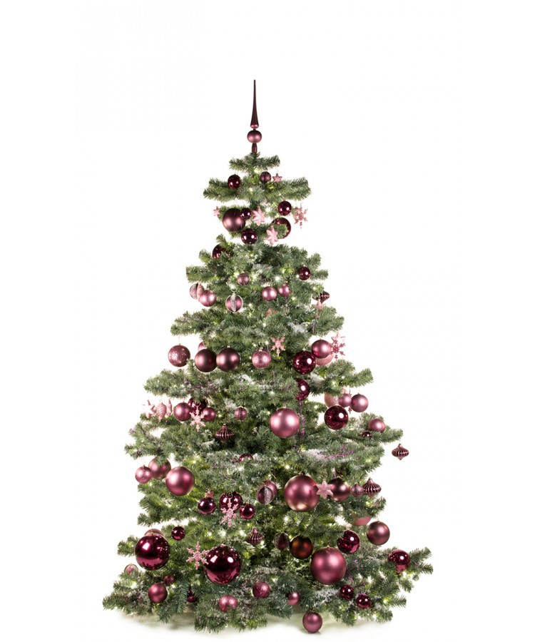 Basic Tree Purple Milka 210cm | Kerstbomen