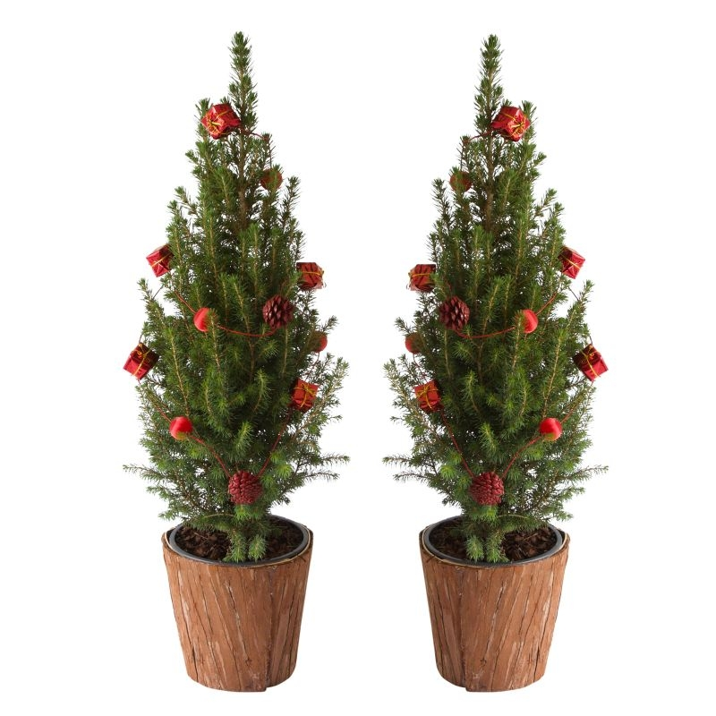 Mini-kerstboom met rode slingers (set 2)