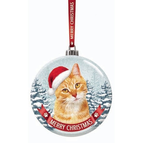 Kerstversiering glazen kerstbal rode kat/poes 7 cm