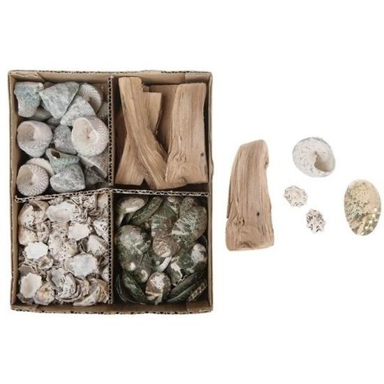 Schelpen/schelpjes/houtjes mix in box naturel 20 x 17 cm